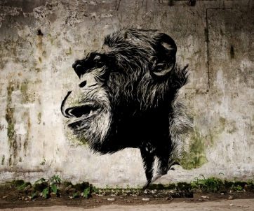 Banksy Chimp sml