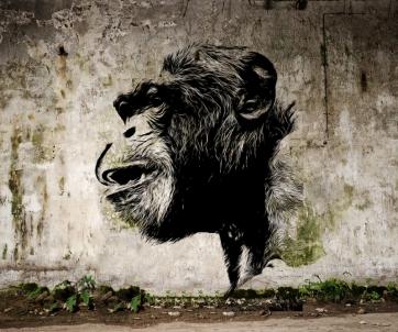 Banksy Chimp sml